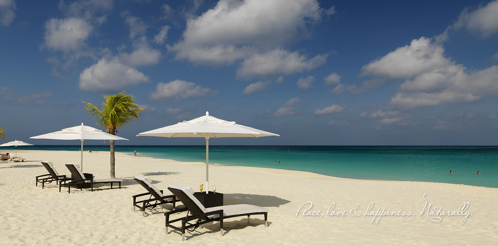 Aruba Romantic Resort u0026 Hotel Bucuti