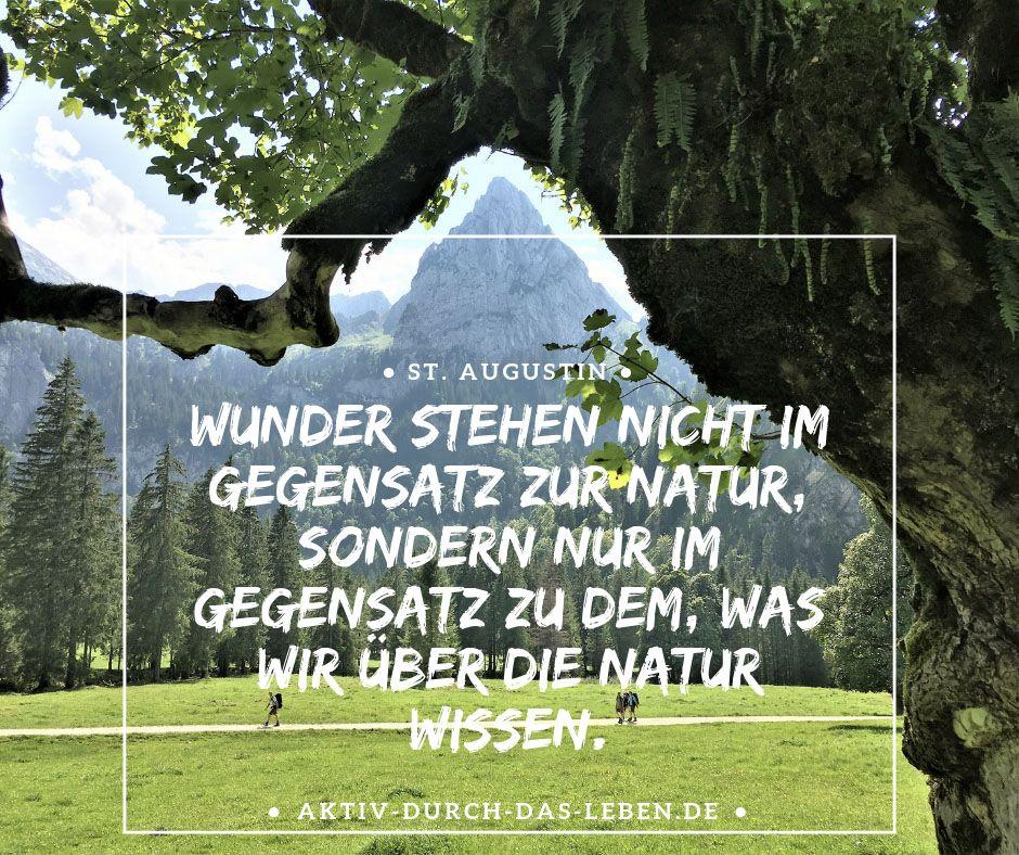 Die Schonsten Spruche Wandern Liebe Natur Und Mehr Aktiv Durch Das Leben De Wanderblog Schone Spruche Spruche Zitate Natur