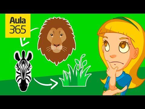 Como Es Un Ecosistema Videos Educativos Para Niños Youtube Videos Educativos Cadena De Comida Hábitat De Animales
