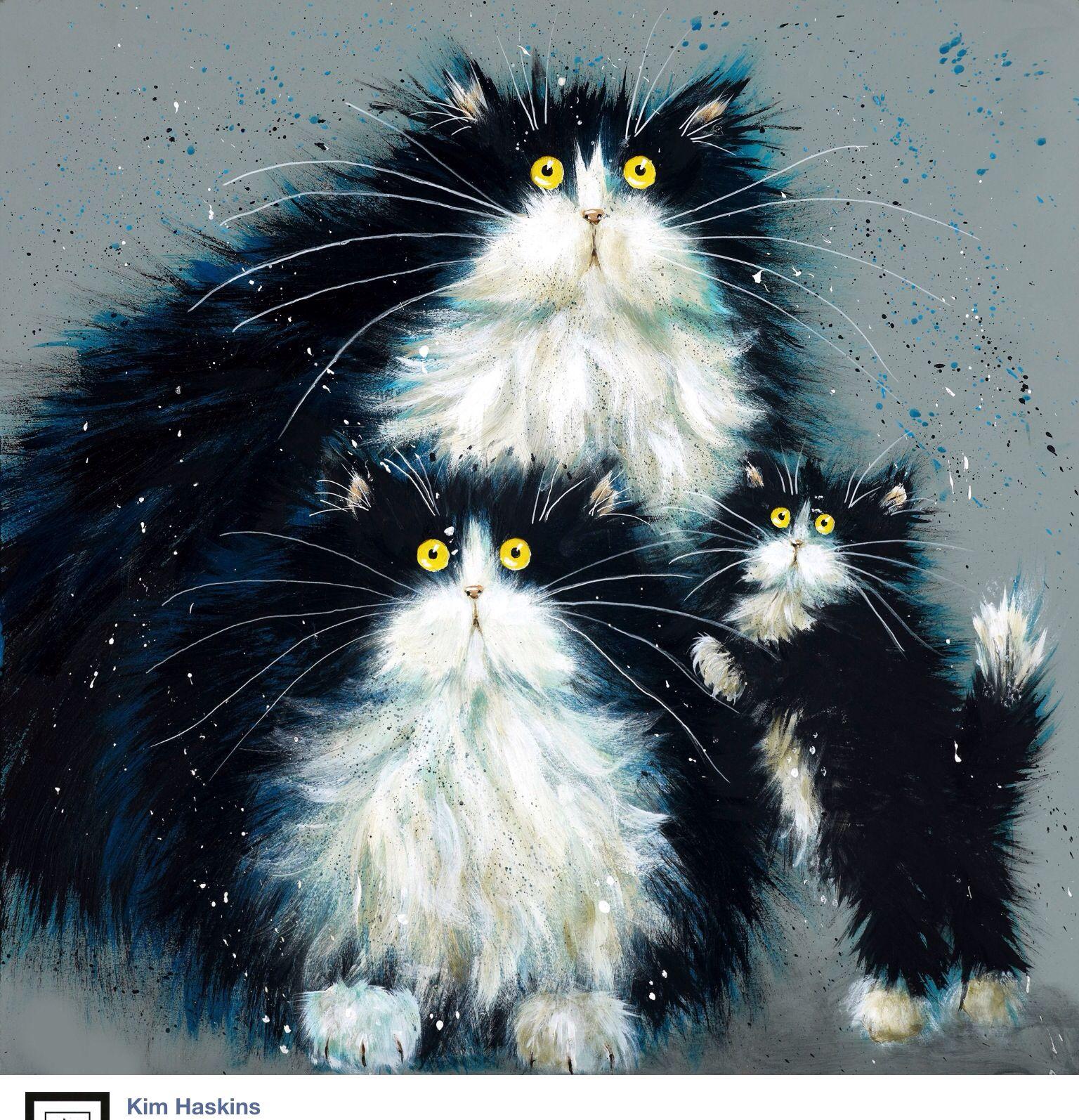 Kim Haskins... Cats illustration, Cat art, Cat drawing