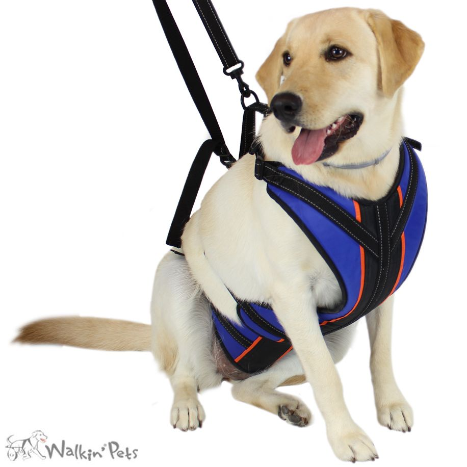 Walkin Lift N Step Harness Full Body Dog Harness Handicapped Pets Dog Harness Dog Wheelchair Your Dog