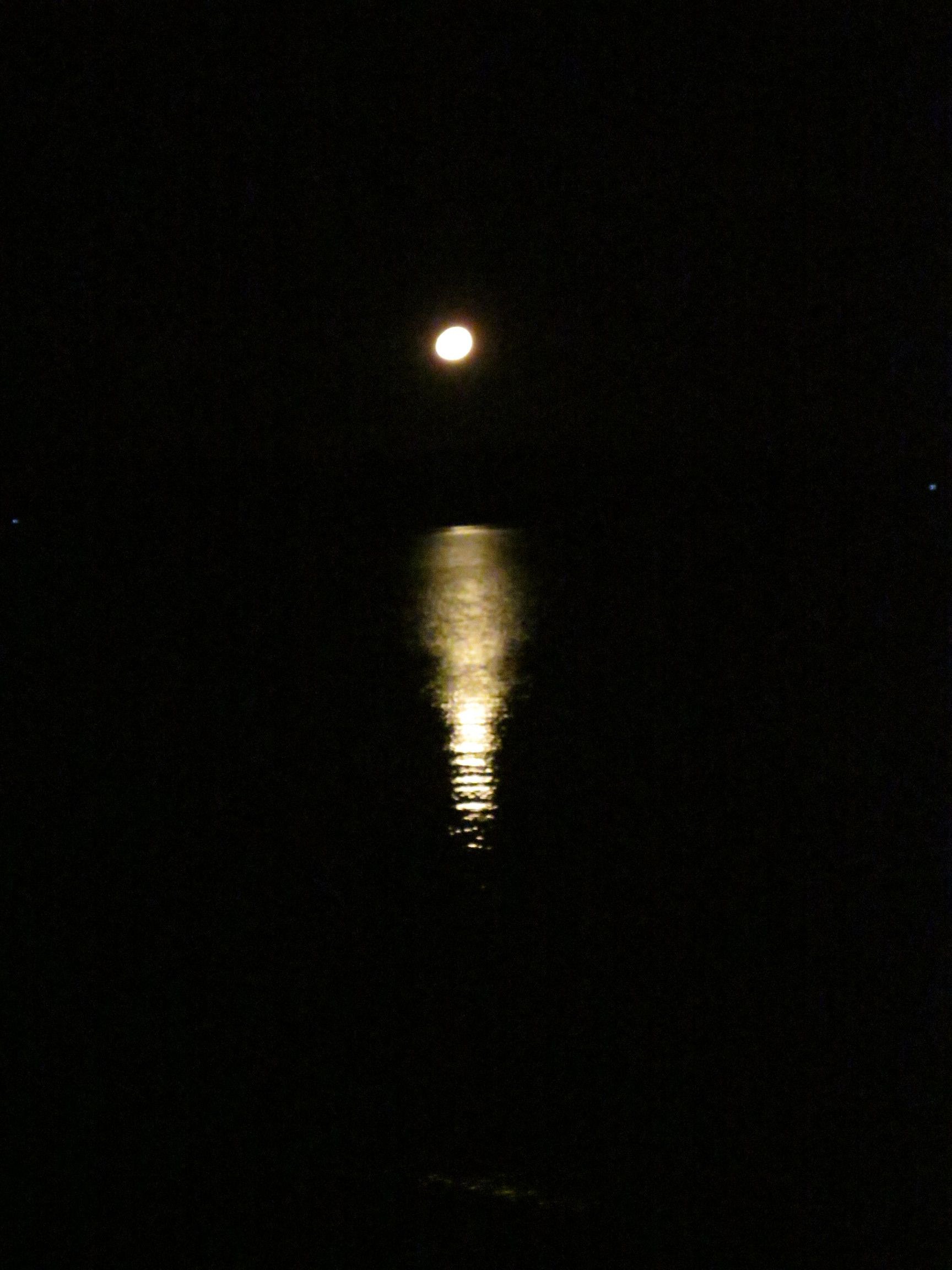 """Carol's moon! """"A picture I took last night. I woke at 2:30, after going to bed at midnight. Had to walk out to the beach and take this picture. Such a beautiful night."""""""