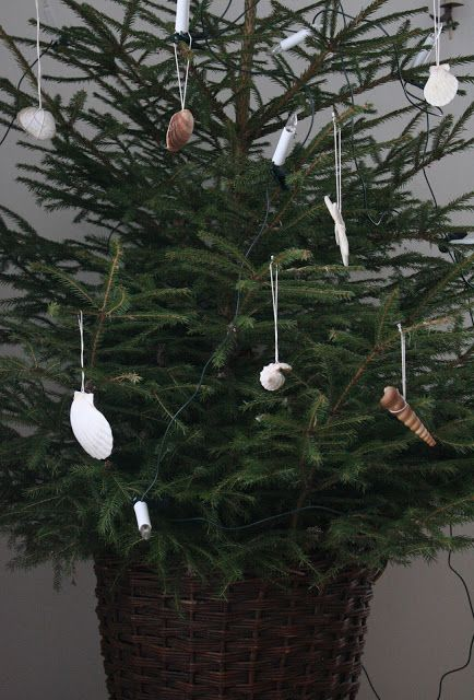 Sea shell decorations tips
