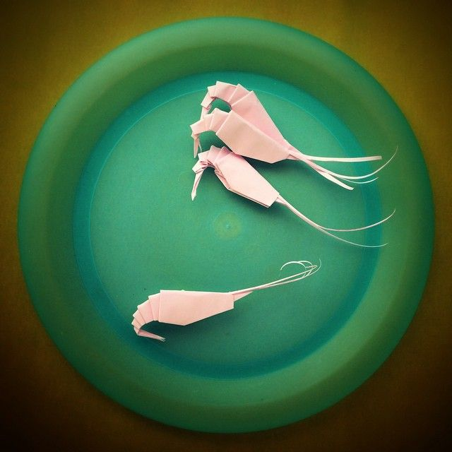 Folding A Shrimp Feels Like Peeling It In Reverse An Origami Big Disappointment