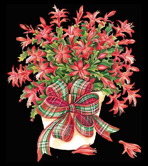 Christmas Cactus Clipart.Christmas Cactus Clip Art Clip Art Christmas 1 Clipart