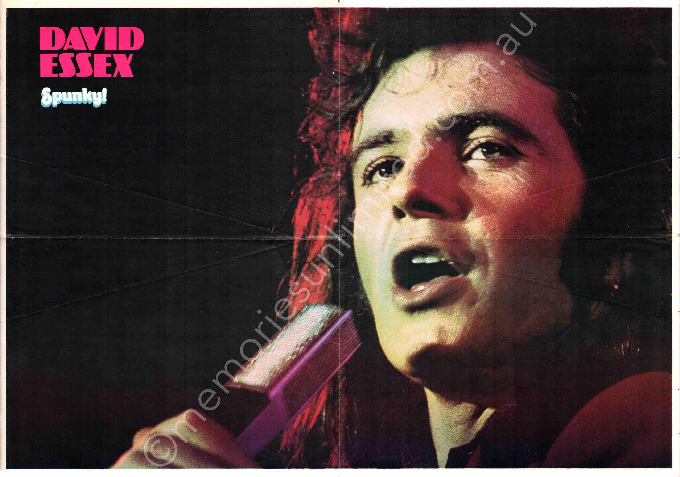 Spunky! 1 Supplement Poster David Essex Memories