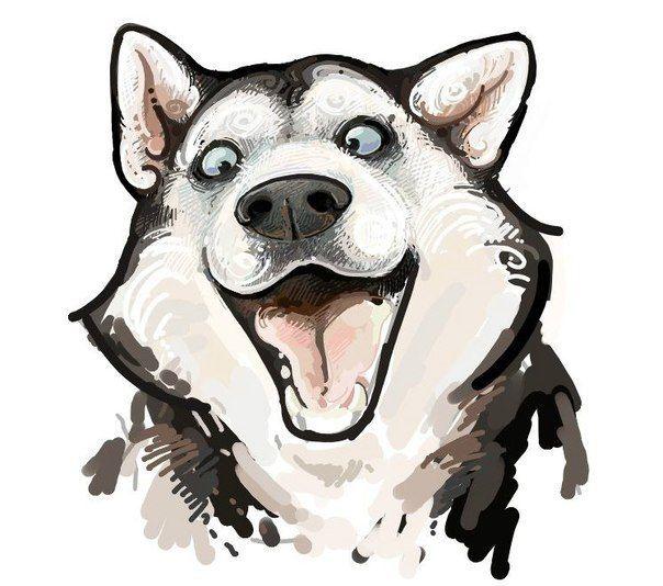Картинки на скайп (40 фото) | Мультяшные собаки, Рисунки ...