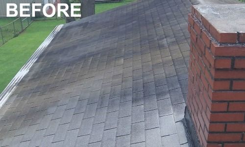 Pin On Roof Cleaning