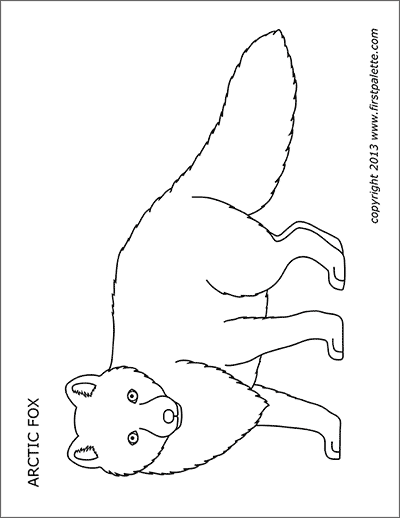 Animal Printables Free Printable Templates Coloring Pages Firstpalette Com Fox Coloring Page Arctic Fox Arctic Fox Art