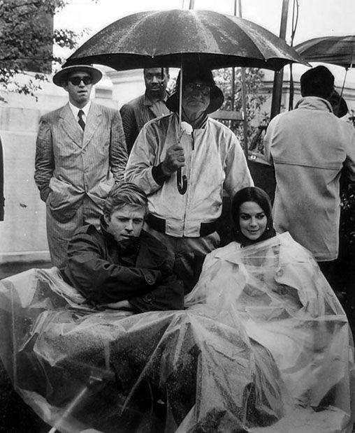 Robert Redford A Certain Cinema The Beautiful Miss