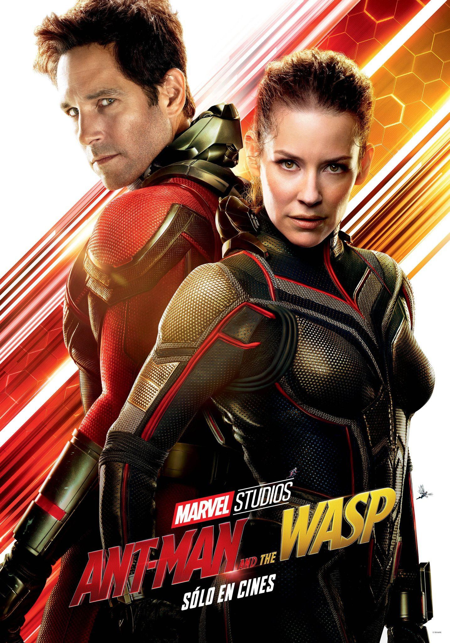 Ant Man And The Wasp 2018 Paul Rudd Evangeline Lilly
