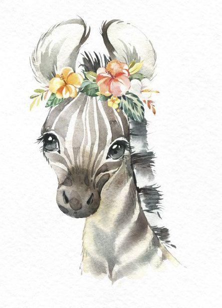 Africa cebra elefante león león acuarela pequeños animales clipart, bebés retrato cachorro flores, niños lindo, arte de la guardería, baby-shower octopusartis