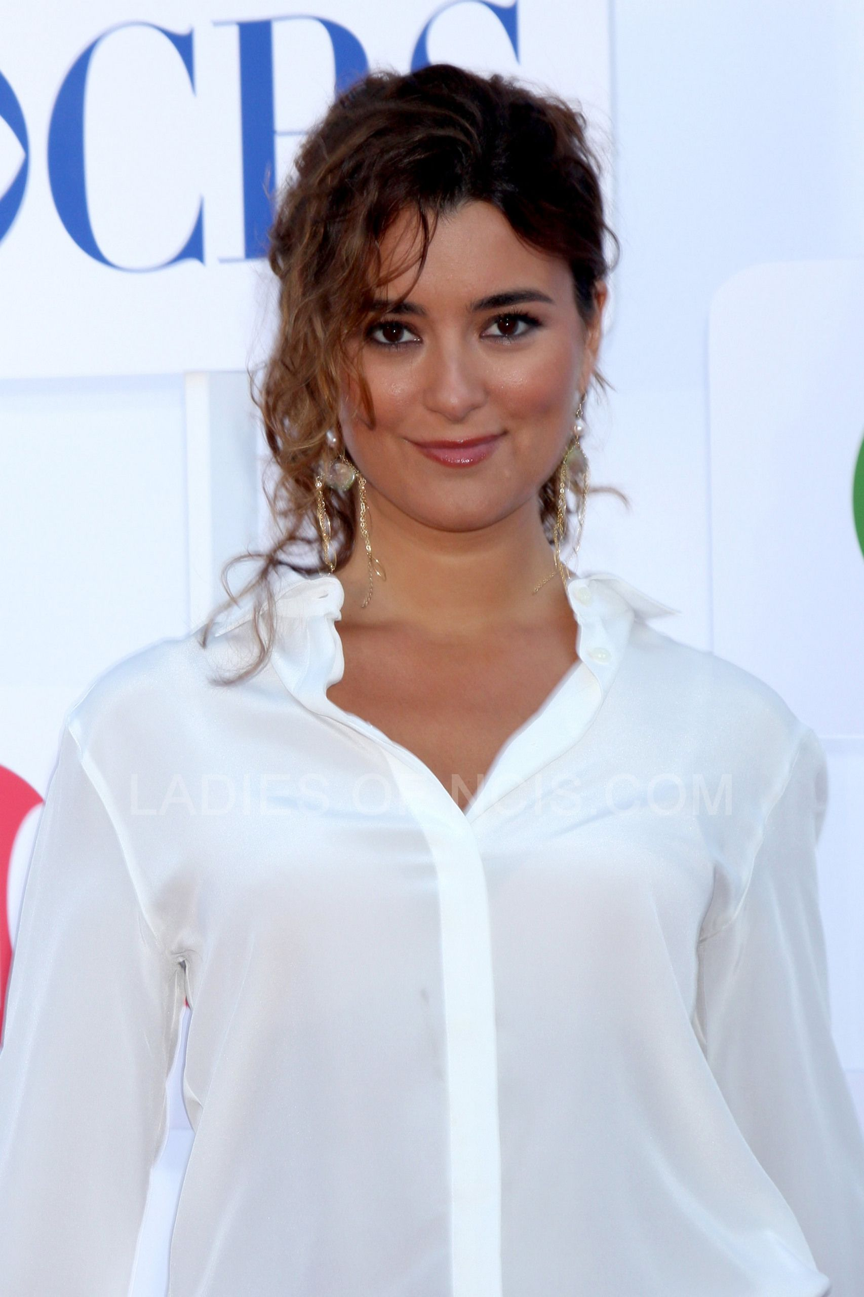 cote de pablo net worth