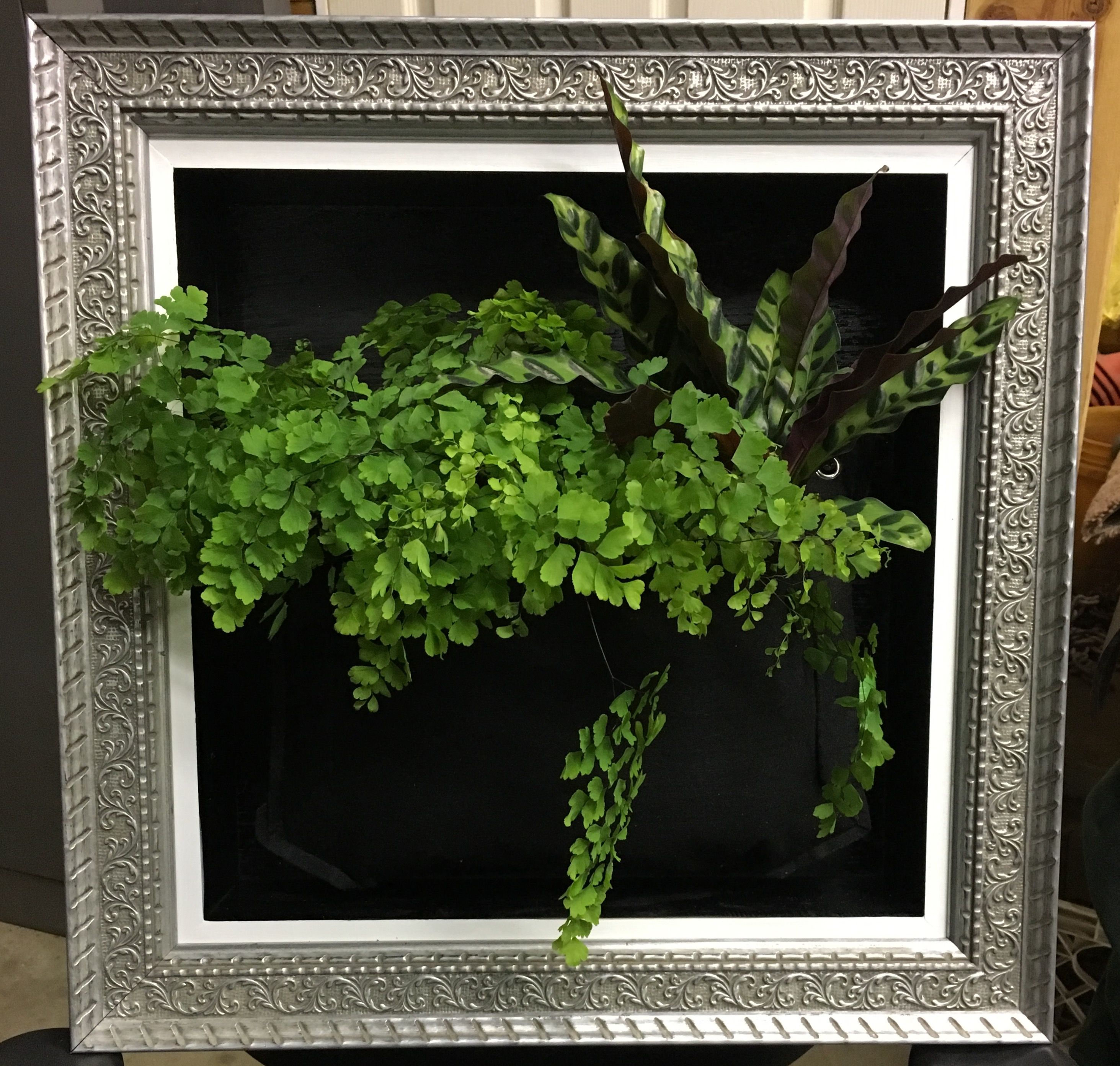 Living Wall Art Created By Us High End Framing That