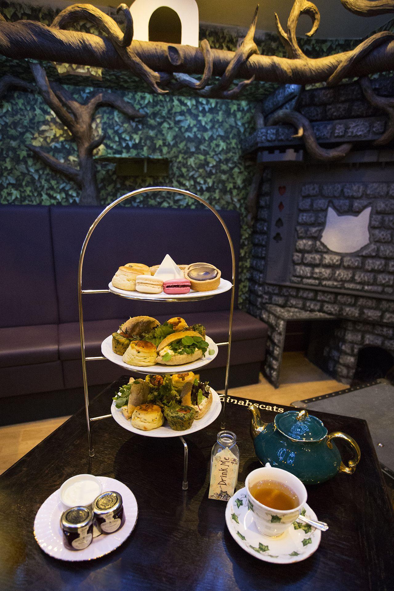 Book Now London high tea, Afternoon tea, Cat cafe