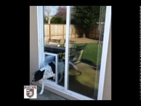 The Security Boss In Glass Maxseal Petdoor Offers Sizes To Fit Any