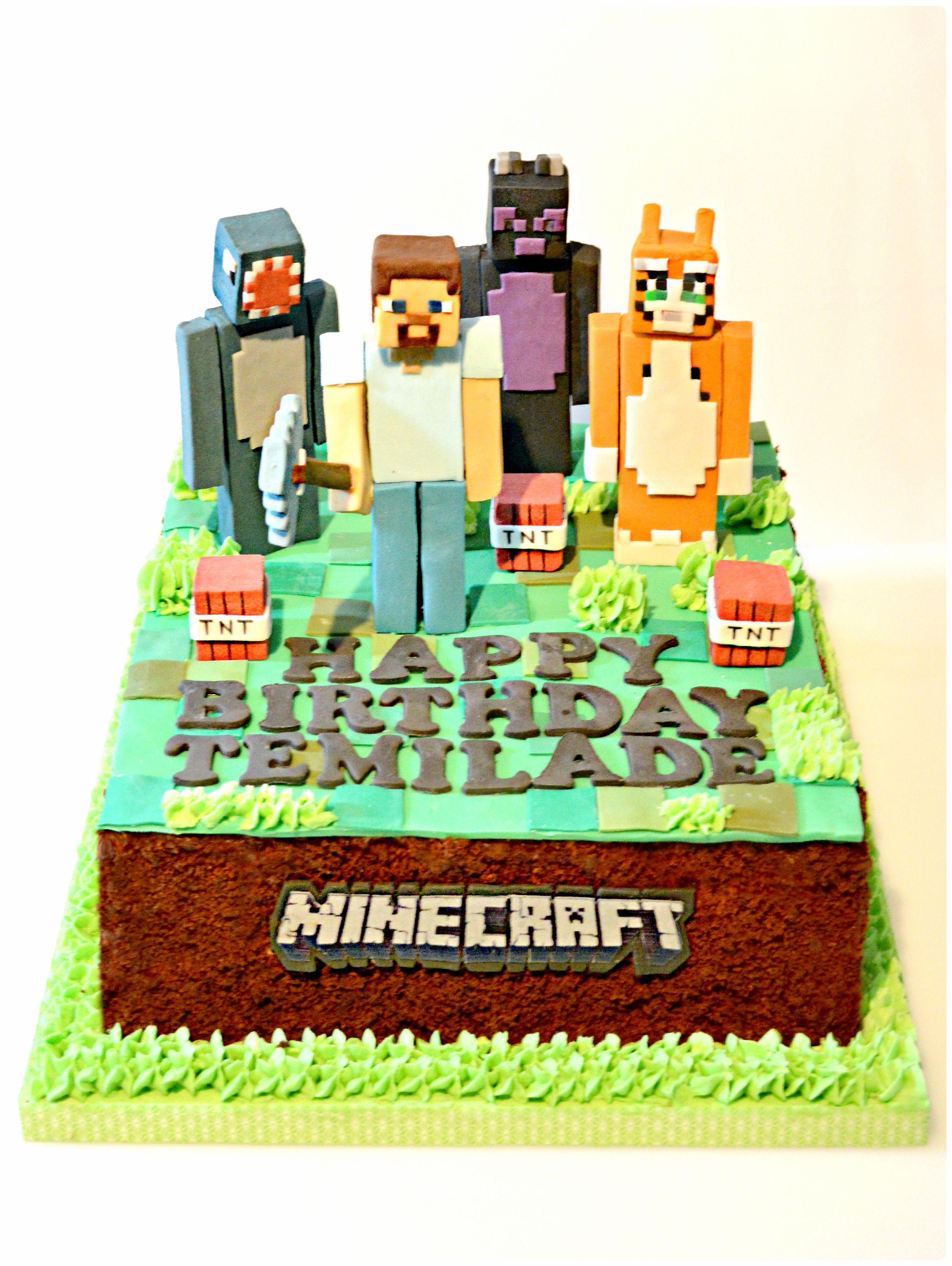 Minecraft Stampy Cat Enderdragons Ballistic Squid And Steve With