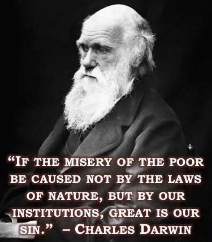 Darwin Quotes: Great Quotes & Great Minds