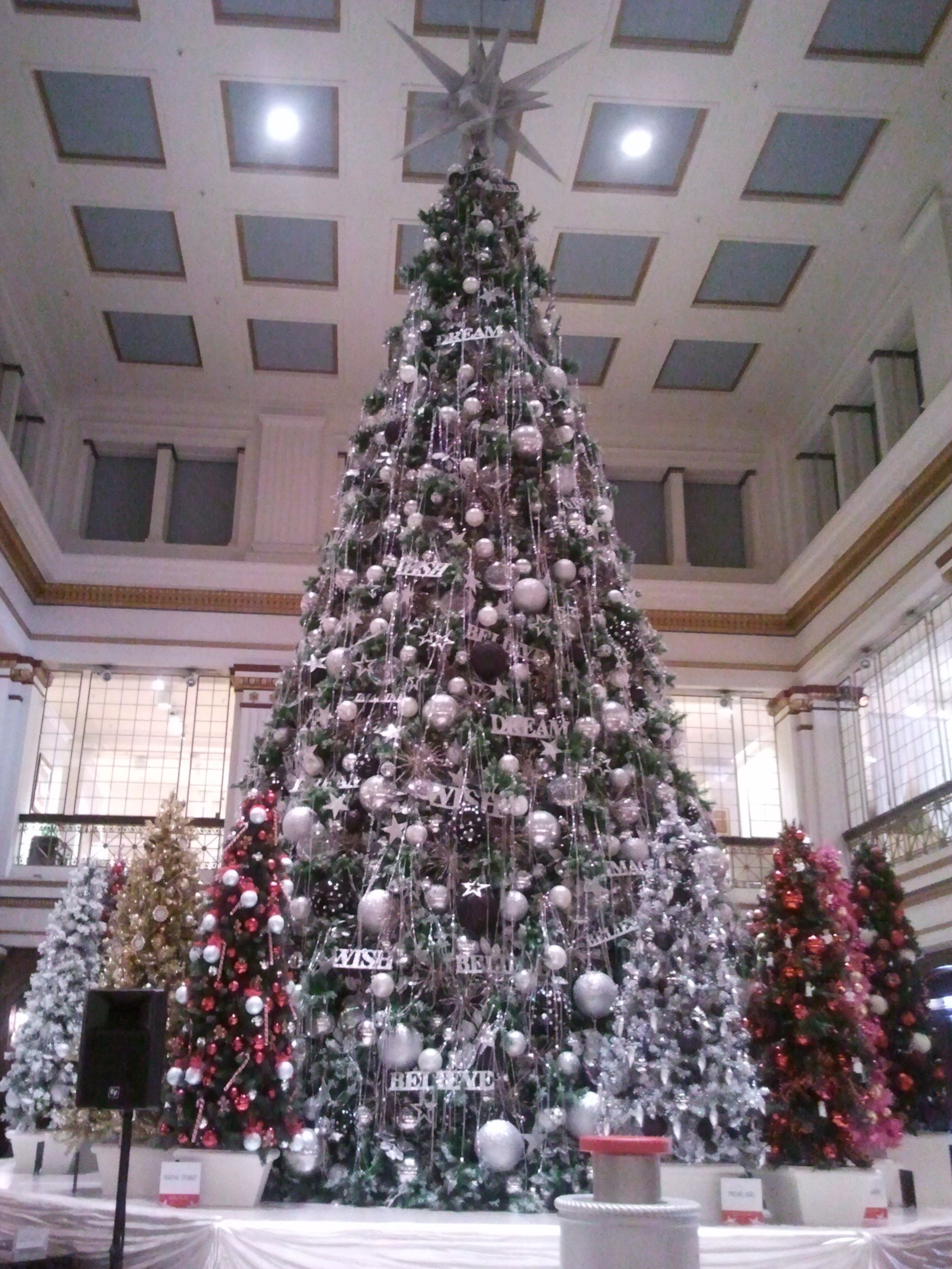 Excursion Travels Christmas Tree Christmas Holidays And Events