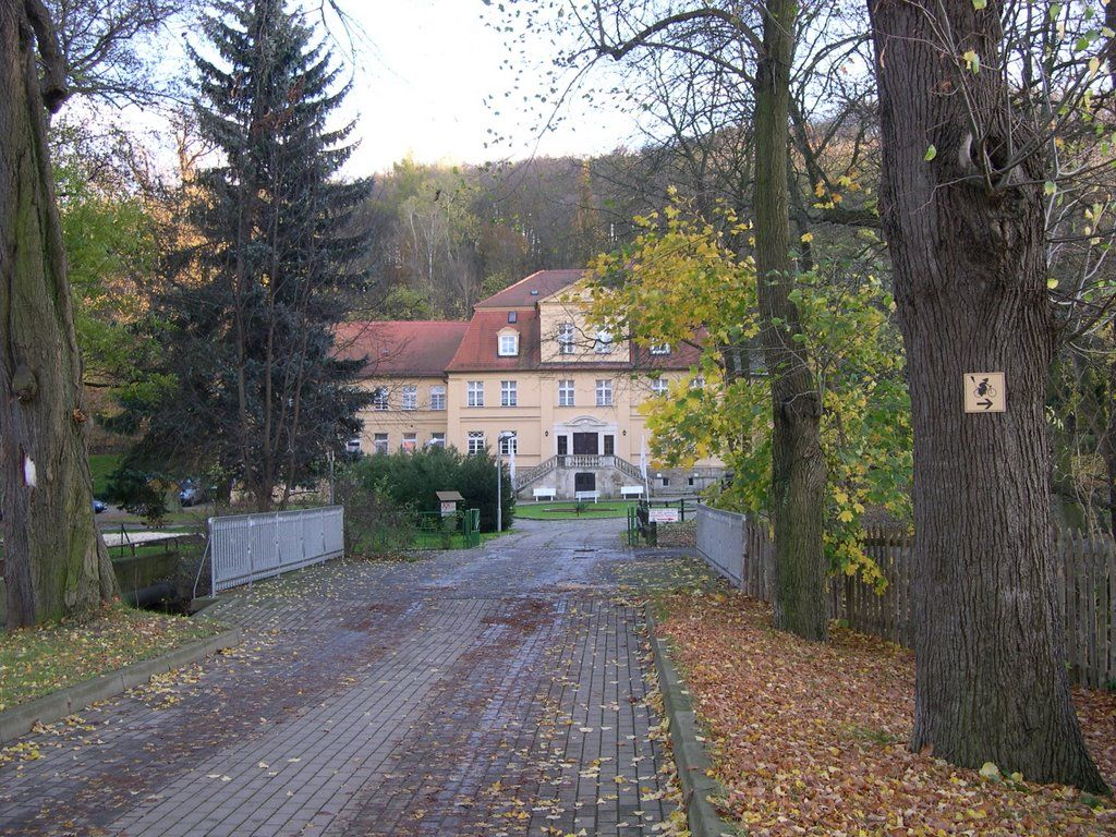 Panoramio - Photo of Das Schloss der Familie Knigge in Harkerode