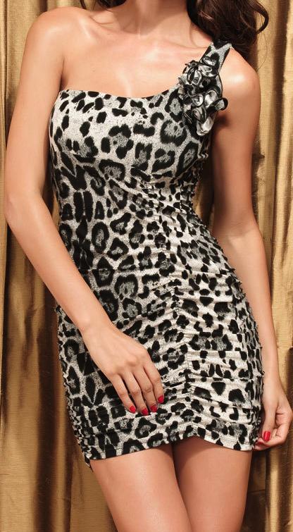 Leopard print mini dress  3ae887c8a