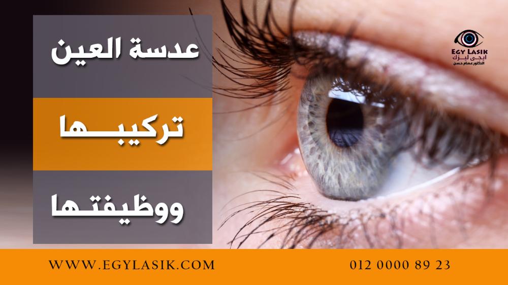 عدسة العين تركيبها ووظيفتها وأخطر الأمراض التى تصيبها Egylasik Lasik Iris Eyes