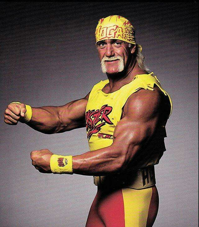 Hulk Hogan Wwe Search Wrestling  sc 1 st  Pinterest & Pin by MELISSA A. KLEIN on HULK HOGAN!   Pinterest   Hulk hogan