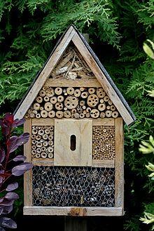 h tel insectes wikip dia h tels insectes pinterest insectes jardinage et maisons en. Black Bedroom Furniture Sets. Home Design Ideas