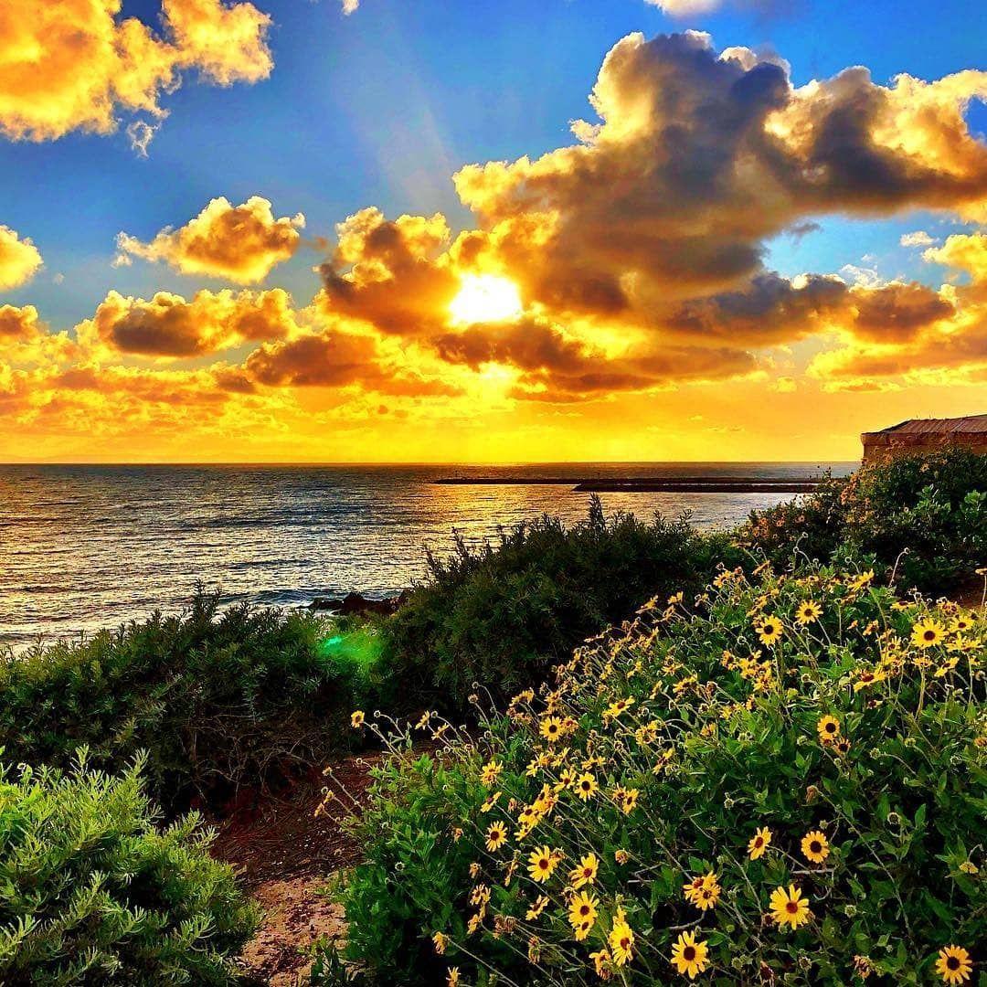 Newport Beach Randki