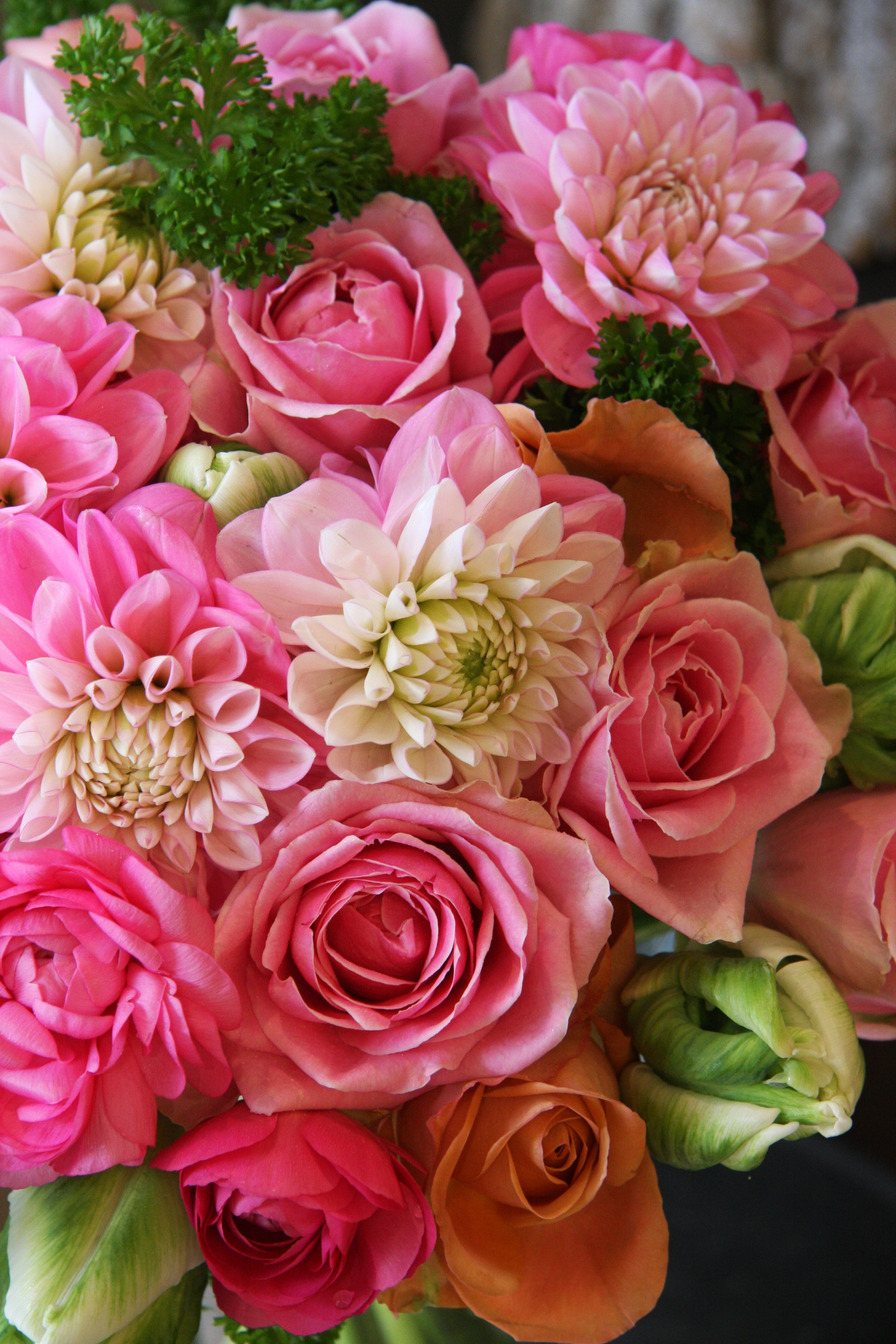 Dahlia, Rose, Ranunculus and Tulip. ~ Sent from Mom 2/28/15.