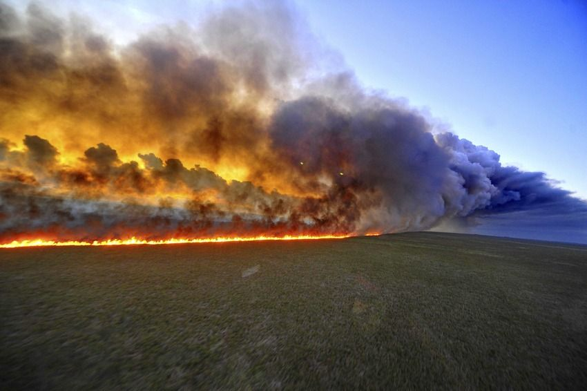 forest fire research paper