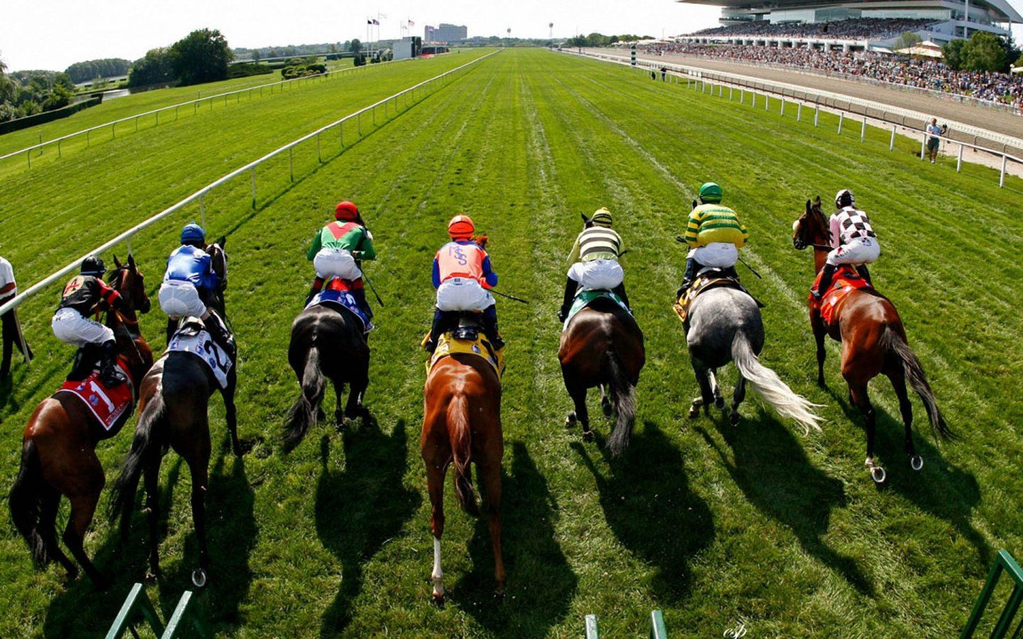 Horse racing in dubai betting on sports online betting triple crown