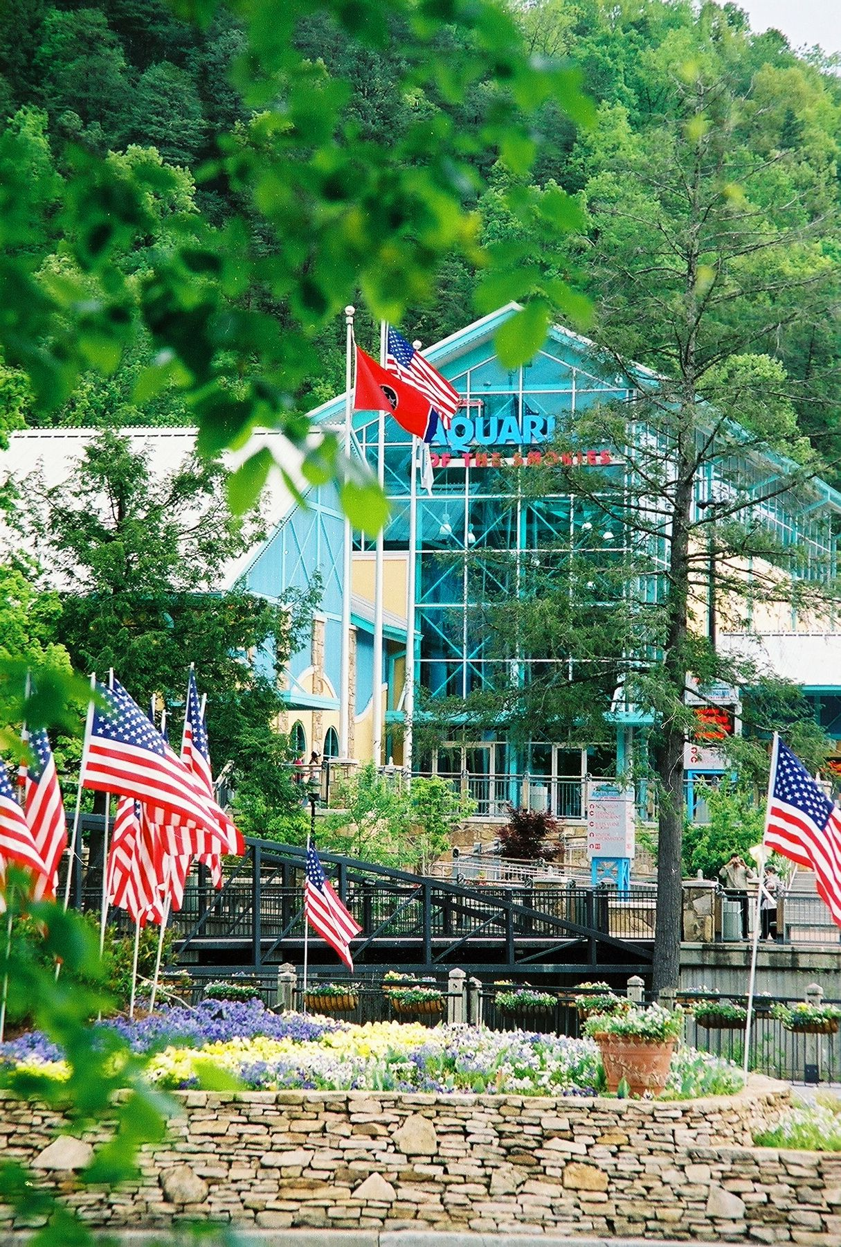 Smoky Mountain Attractions - In Pigeon Forge