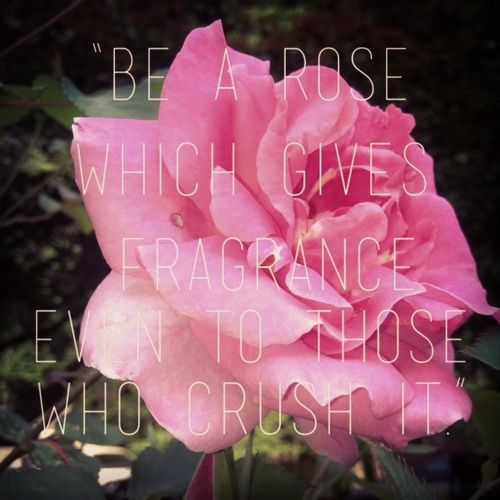 Pink flowers tumblr quotes 219 zelma hippolyte pinterest flowers pink flowers tumblr quotes 219 mightylinksfo