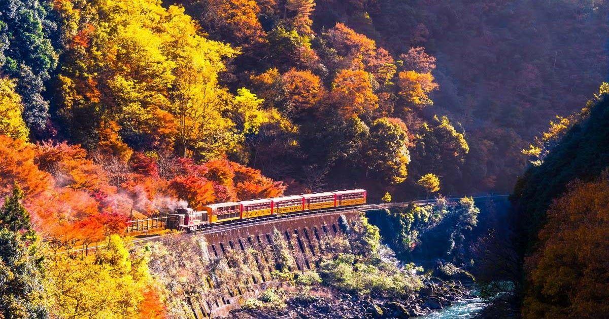 34 Pemandangan Alam Terindah Di Jepang Musim Gugur Di Jepang Sangat Indah Rekomendasi Menarik Download Hal Unik Di Jepang Yang Han Di 2020 Pemandangan Alam Jepang