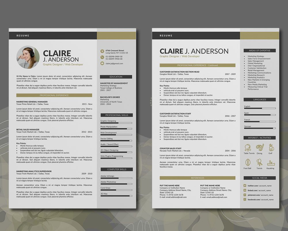 PROFESSIONAL RESUME TEMPLATE / CV TEMPLATE, 3 PAGES WORD