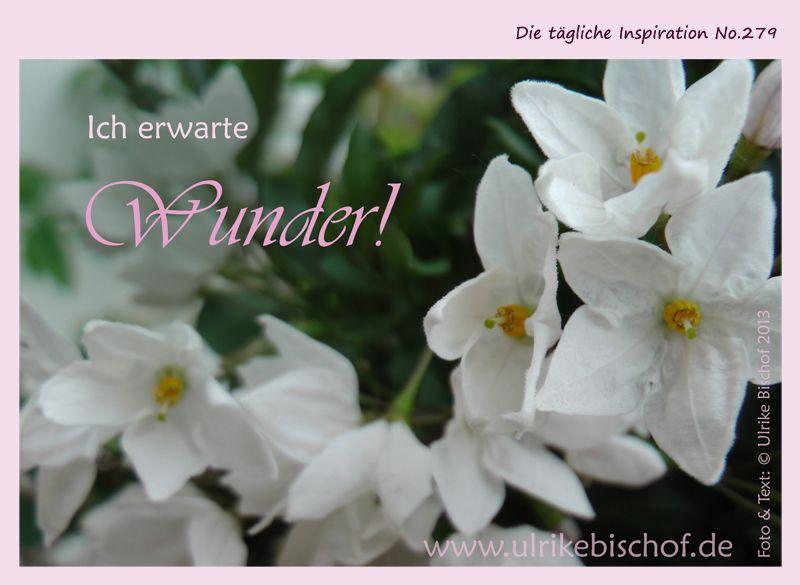 Die tägliche Inspiration No.279  www.inspirationenblog.wordpress.com  www.ulrikebischof.de