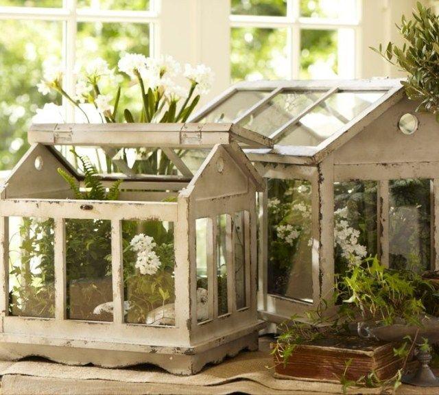 mini terrarium pflanzen holz hauschen greenhouse. Black Bedroom Furniture Sets. Home Design Ideas