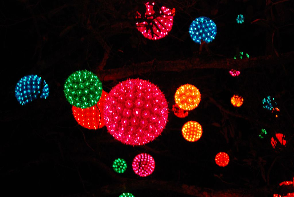 All sizes   Light Balls Hanging in a Tree   Flickr - Photo Sharing ...