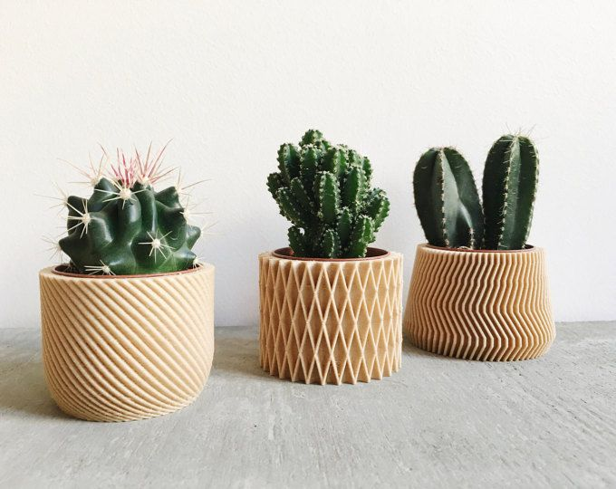 Cache Pot Bois Geometrique Cactus Et Succulente Origami Com