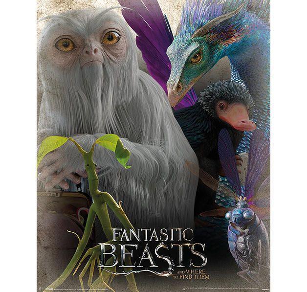 Fantastic Beasts Poster Phantastische Tierwesen Tierwesen Fantastische Tierwesen
