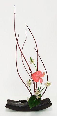 Flower Arrangement Class Dc