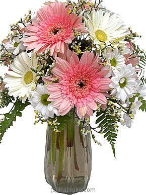 White Gerbera Daisies Arrangement Kapruka Sri Lanka Sincere Thoughts Gerbera Daisy Arrangement Gerbera Gerbera Daisy Flowers