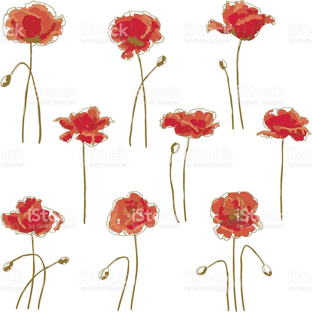 Satz Von 9 Mohn Blume Vektor Blumen Blumen Und Mohnblume