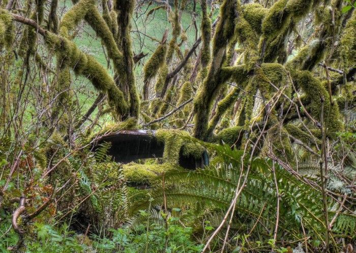 This Creepy Ghost Town In Washington Is The Stuff Nightmares Are - 27 places stuff nightmares made