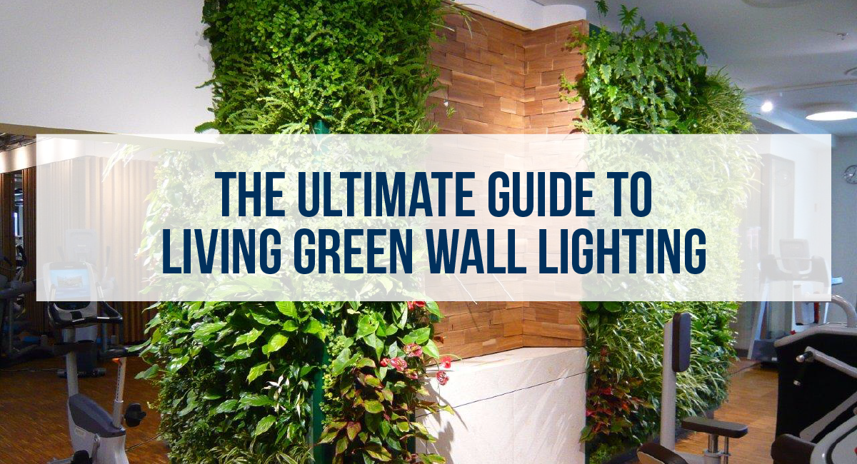 The Ultimate Living Green Wall Lighting Guide Newpro Blog