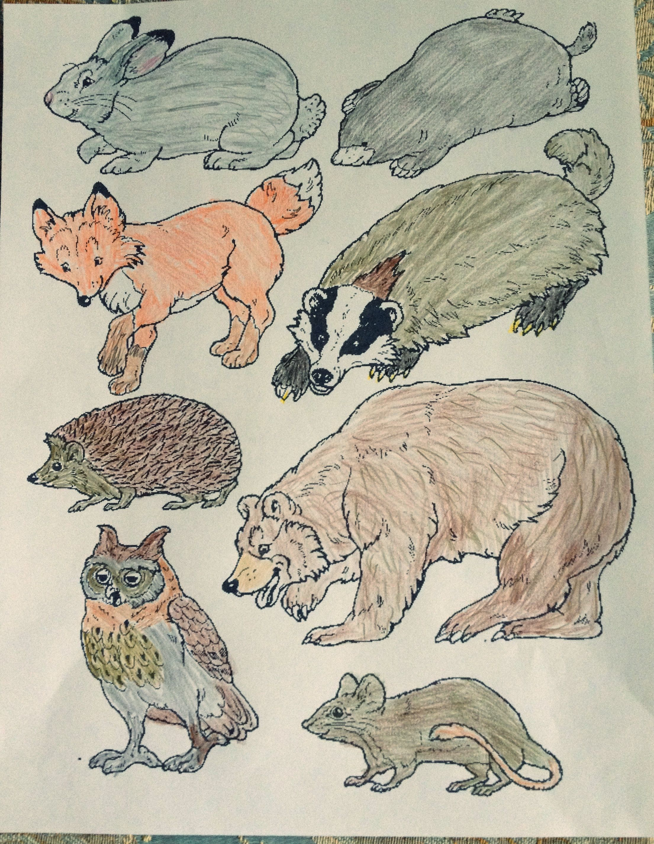 The Mitten Animals Link To Print Mitten And Animals