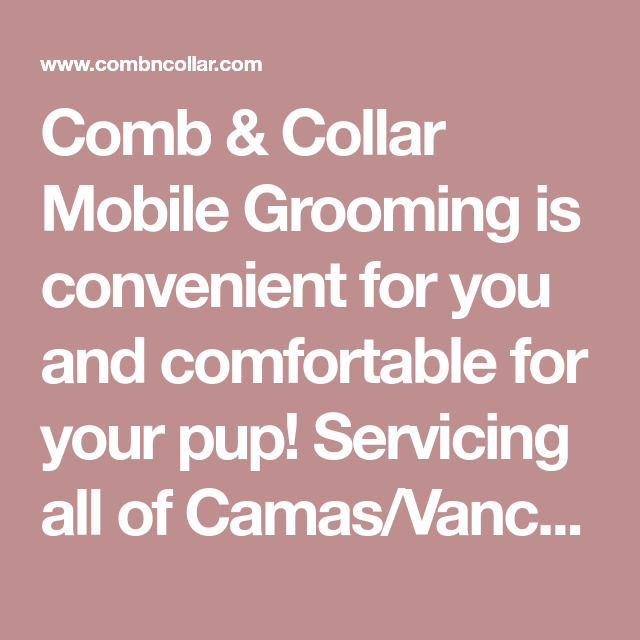 Comb Collar Mobile Grooming Is Convenient For You And Comfortable For Your Pup Servicing All Of Camas Vancouver Wa And Surrounding Clark Grooming Camas Pup