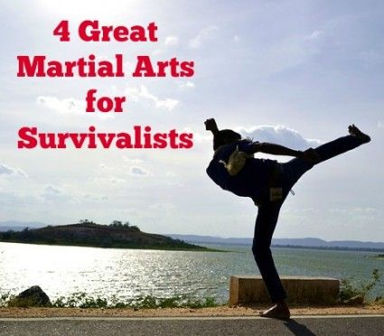 Studying a martial art is an excellent addition to your prepping skill sets, not to mention the physical fitness aspect.