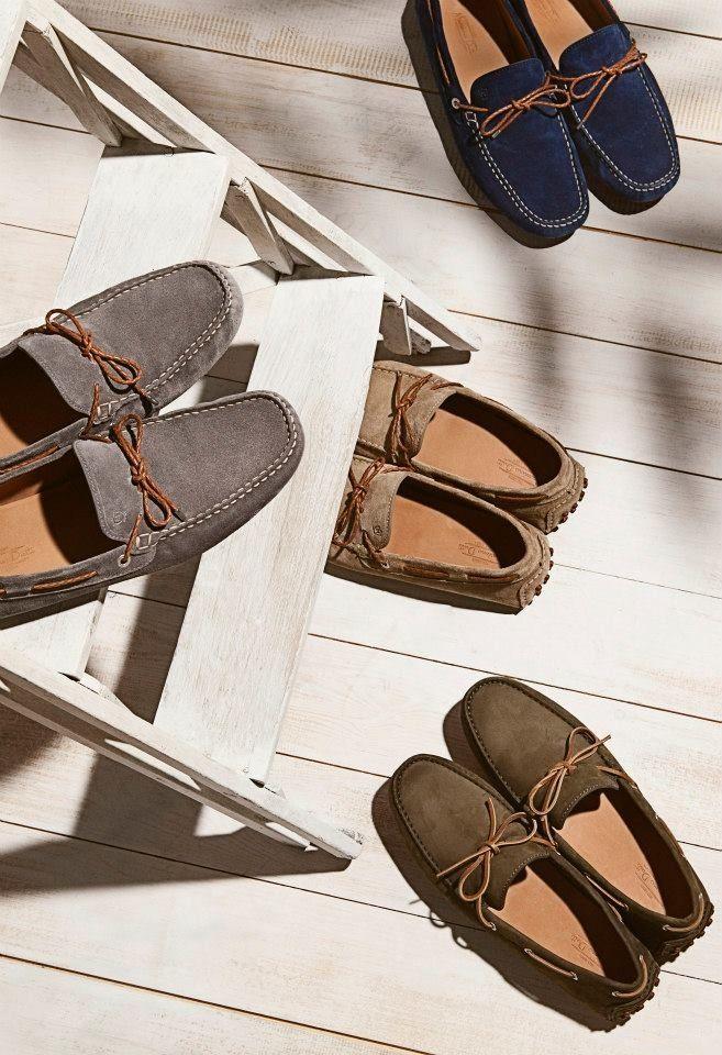 8d0a4cedd33a Massimo Dutti shoes.. it s already bought   )   Moda